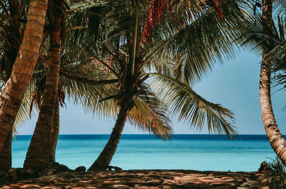 5 razloga da posetite Madagaskar